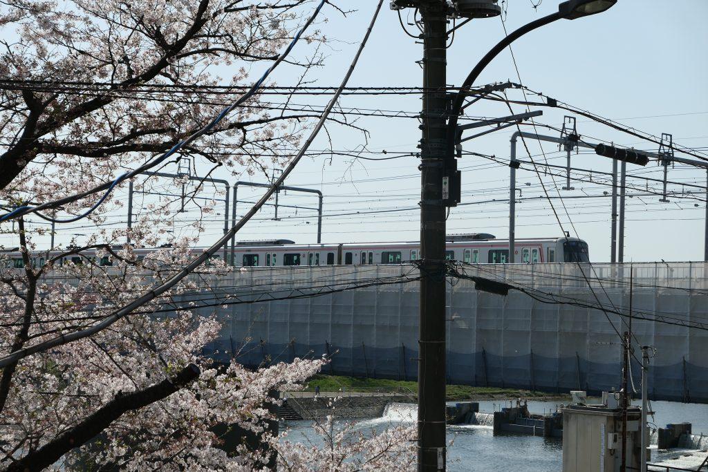 多摩川や桜・夜景・電車を眺めながら絶品ローストビーフを!    『多摩川ダイナー(TAMAGAWA DINER)』へランチに行ってきました!